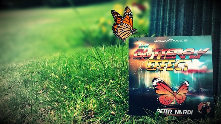 The Butterfly Effect (DVD...