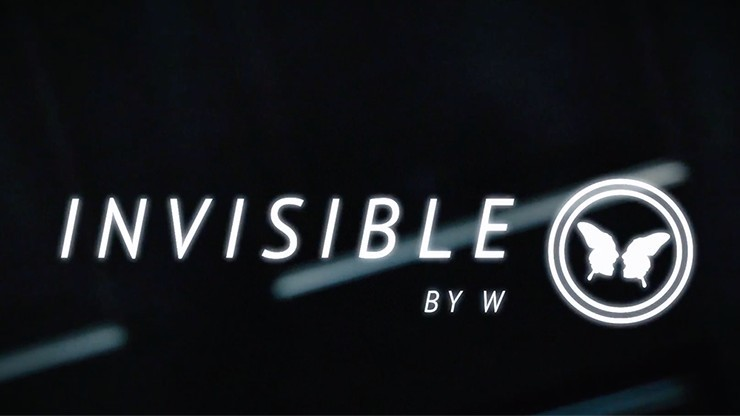 Invisible (DVD and...